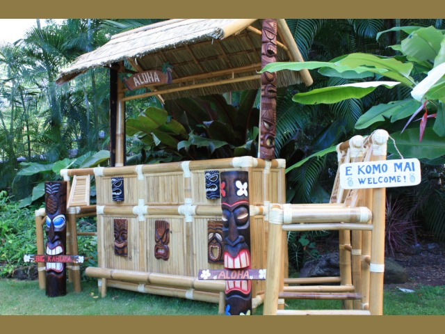 Outdoor Living Space - Tiki Bar Vacation