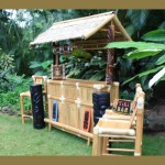 Modern Pop Art Outdoor Tiki Bar