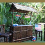 All American Outdoor Tiki Bar