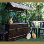 The Hawaiian Outdoor Tiki Bar